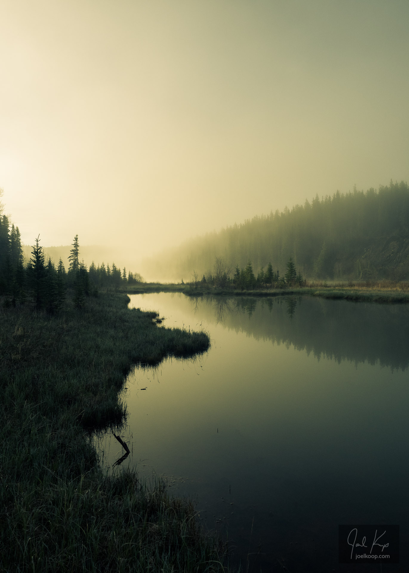 Golden Fog Along the River I