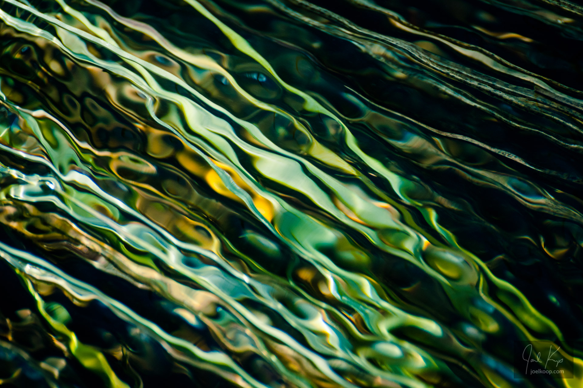 Rippled Grass